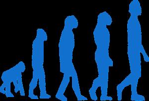 evolution, monkey, man